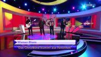 WienerBlues-ORF-2016-4